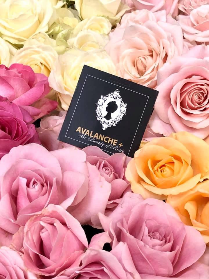 Fiorista Roma - Rose Avalanche+